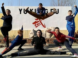 5 Months Shaolin Kung Fu Training in Shandong Province, China