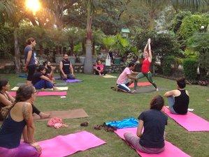 11 Day 100 Hour Yoga Teachers Training Course (TTC) In Rishikesh