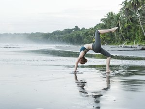 25 Days 200-Hour Transformational Yoga Teacher Training in Bali
