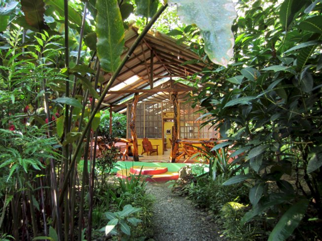 10 Days Detox and Yoga Retreat in Limón, Costa Rica