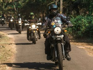 10 Day The Planters Punch Guided Motorcycle Tour in Kerala, Tamil Nadu, and Karnataka