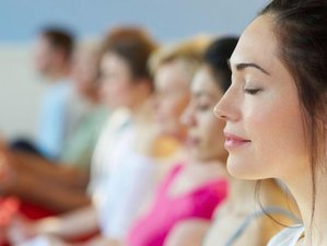 2 Day Online Meditation Retreat with Arinna Weisman