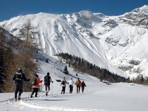 5 Tage Yoga, Wandern, Wellness und Naturerlebnisse mit Schneeschuhen im Wipptal, Österreich