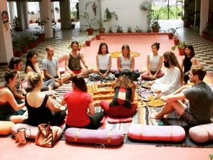 22 Day Life-Changing Yoga Teacher Training Certification Course in Rishikesh
