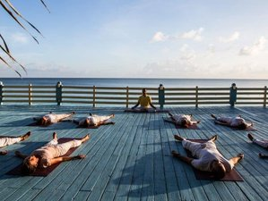 15 Days Meditation and Yoga Retreat Paradise Island, Bahamas
