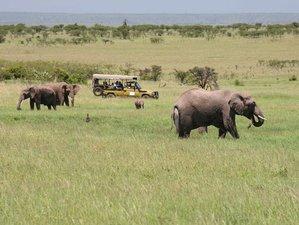10 Days The Northern Exploits Safari in Kenya