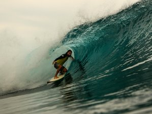 14 Day Indonesian Surfing Tour