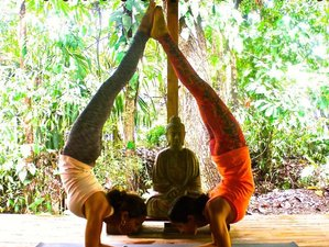 7 Days Women's InnerYOUth Yoga Retreat in Costa Rica