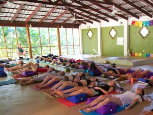 7 jours en stage de yoga au Costa Rica