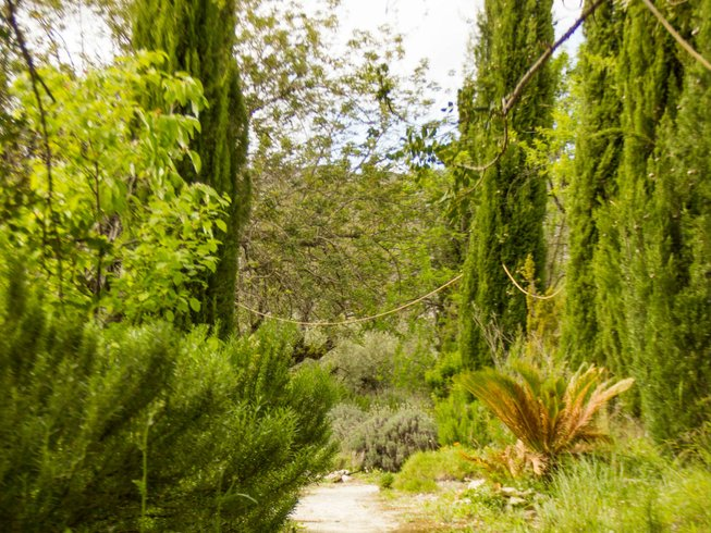 6 Days Cooking, Healthy Eating, Meditation, and Yoga Retreat in Valencia, Spain