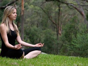 4 Day Transform Your Life Mindfulness Essential Retreat in Maraylya, New South Wales