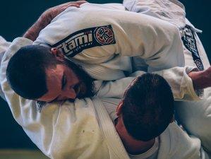Gracie / Brazilian Jiu-Jitsu