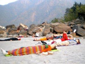 13 Days Yoga Retreat in Rishikesh Yog Peeth, India