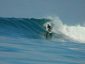 7 Days Stay and Surf Camp in Canggu, Bali