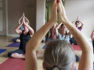 5-Days New Year Meditation, Hatha and Yin Yoga Retreat near the Forest of the Veluwe