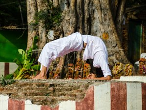 6 Days Yoga and Healthy Lifestyle Retreat in Valencia, Spain