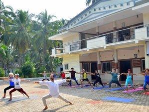 22 jours en vacances culturelles de yoga et ayurveda dans les backwaters de l'Inde du sud