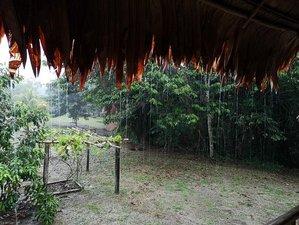 5 Day Amazon Wildlife Tour in Iquitos, Loreto
