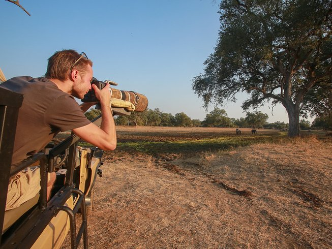 7 Days Exciting Photographic Safari in South Luangwa, Zambia
