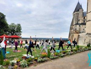 5 jours en stage de yoga multi-styles et méditation ouvert à tous à Saumur, Pays de la Loire