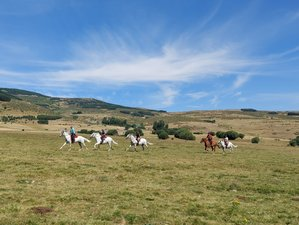 7 Day Crystalline Waters of Gredos Horse Riding Holiday in the Gredos Area, Spain