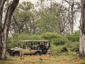 7 Days Simple & Wild Safari in Botswana