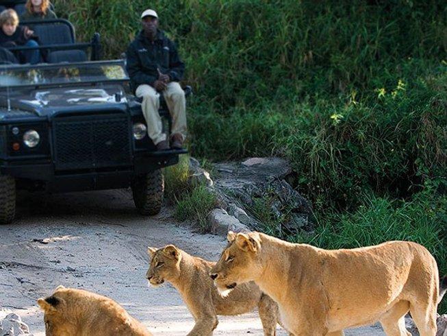 4 Days Kruger National Park Rhinoceros Safari