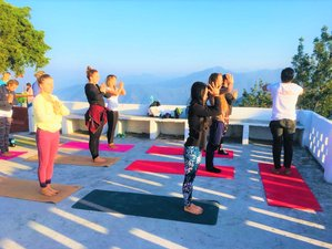 8 Days 50-Hour Yoga Teacher Training in Rishikesh, India