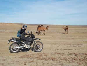 7 Day The Mysterious Ustyurt Guided Enduro Motorcycle Tour in Kazakhstan