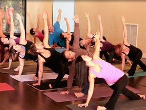 3 Days Yoga and Wellness Retreat in California