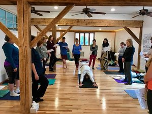12 Weeks 200-Hour Online Radiant Warrior Yoga Teacher Training