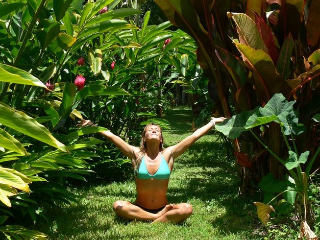 6 Days All Inclusive Health, Detox, and Yoga Retreat in Hawaii, USA