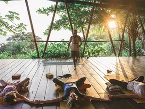 6 Day Costa Rica Nature and Wildlife Infused Yoga Holiday