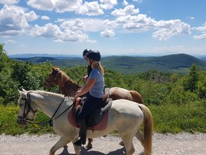 8 Day Exciting Horse Riding Holiday in Tuscany, Grosseto