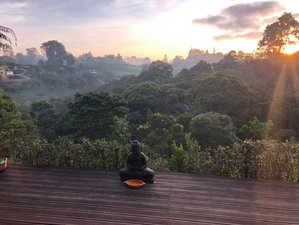 7 Days Mindfulness Meditation and Yoga Mountain Retreat in Medellin, Colombia
