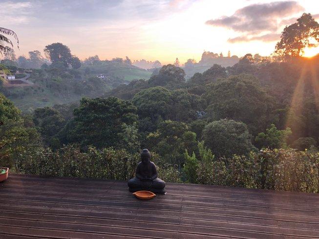 Top 10 Detox Retreats in Colombia