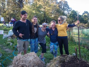 16 Days Permaculture Design Course and Yoga Retreat in Golden Bay, New Zealand