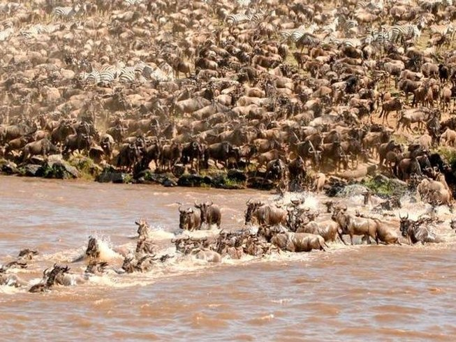 3 Days Luxury Maasai Mara Safari in Kenya