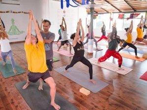 24 Days 200-Hour Blissful Hatha Yoga Teacher Training Course in Gokarna, India