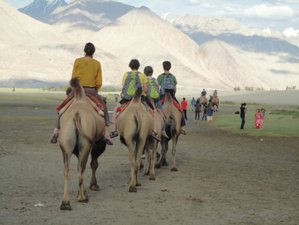 13 Day Amazing Tour and Yoga Holiday in Ladakh