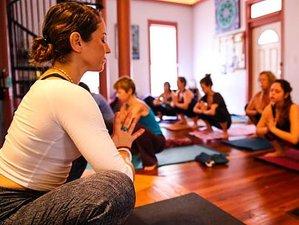 6 Days Panchakarma Yoga Holiday in Florida
