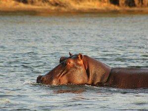 5 Days Classic Safari in Kafue National Park, Zambia