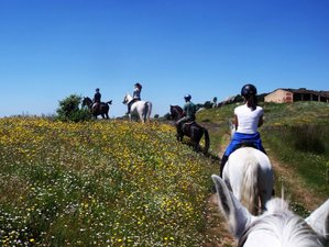 3 Day Follow the Footsteps of Emperor Charles V on a Horse Riding Break to Cuacos de Yuste, Cáceres