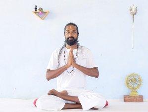 30 Day 50-Hour Online Pranayama, Mudra, Mantra, and Hatha Yoga Teacher Training with Shiva Rishi