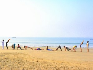 28 Days 300hr Advance Yoga Teacher Training in India