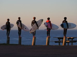 3 Month Spot X Surf Academy Instructor Course in Arrawarra, New South Wales