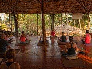 3 Day Amazing Yoga Retreat Canacona, Goa