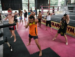 15 Days Muay Thai Training Camp in Chiang Mai, Thailand