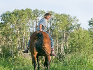 4 Days Ranch and Horse Riding ADDventure Holiday for Teen Girls in Montana, USA