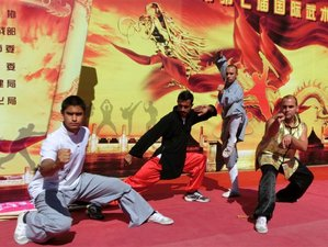11 Months Chinese Language & Kung Fu Training in China